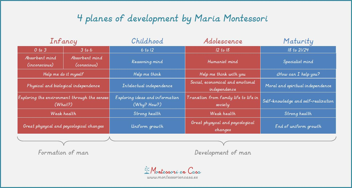 the planes of development Montessori philosophy: the planes of development most people's idea of how  children grow and develop is a steady continuous movement.