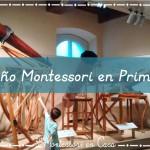El niño Montessori en Primaria: Sembrando semillas de interés – The child at Montessori Elementary