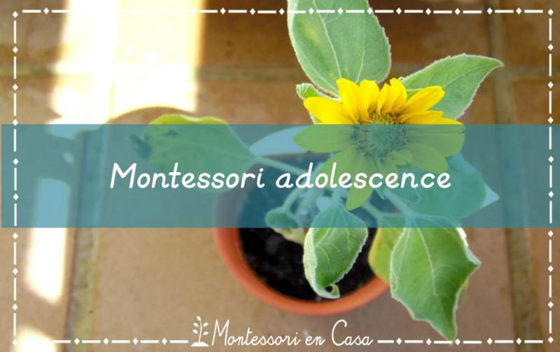 Montessori adolescence