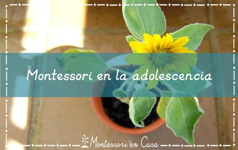 Montessori en la adolescencia