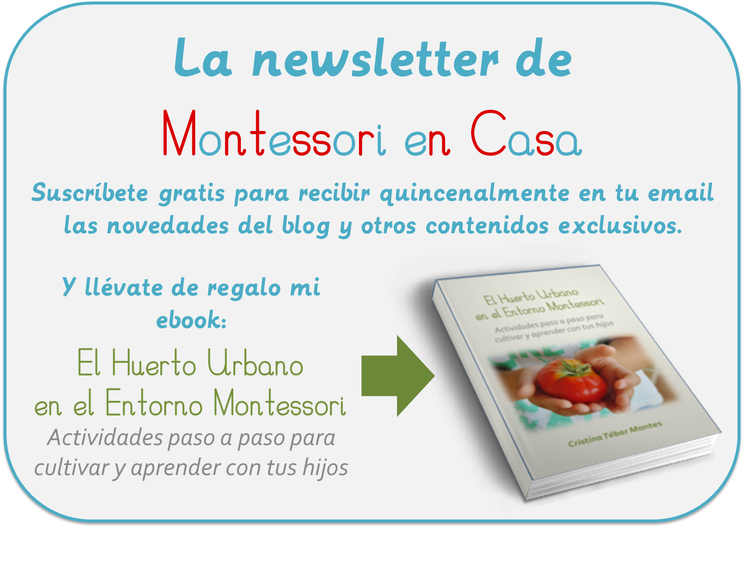Newsletter e-book