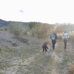 Paseos de naturaleza: Un atardecer de otoño – Nature walks: Autumn sunset