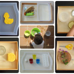 7 Actividades Montessori con agua – 7 Montessori activities with water