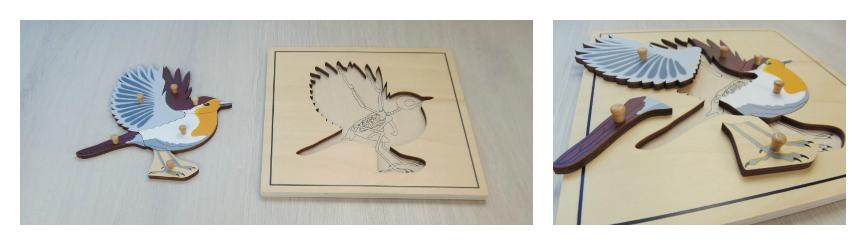 Puzzle pájaro Mina Itse