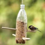 Hacer un comedero para pájaros – Making a bird feeder