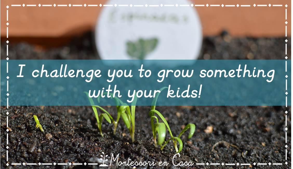chanllenge grow somethingh kids