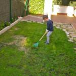 Tareas de jardinería – Gardening works