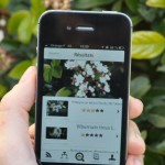 3 Apps gratuitas para la identificación de plantas – 3 Free Apps for plant identification