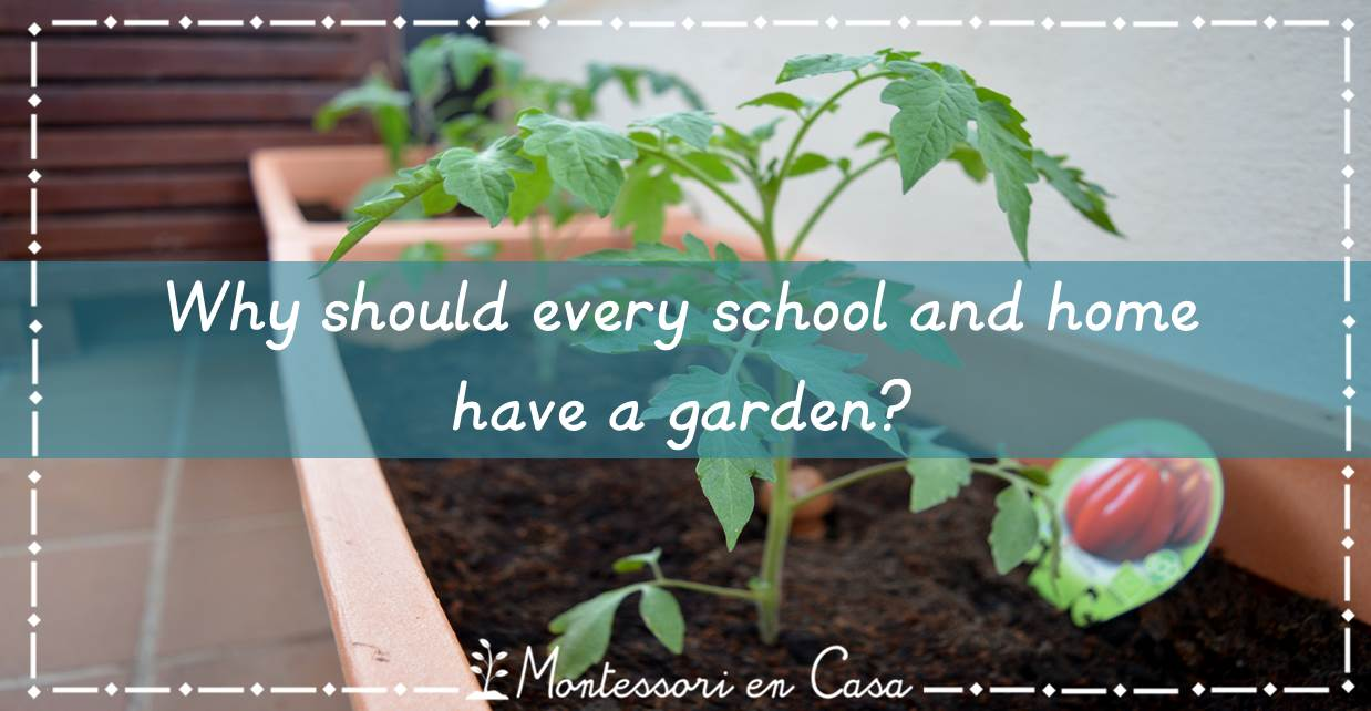 school and home garden